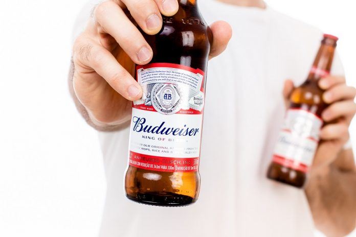 Man holding Budweiser glass bottle with white background