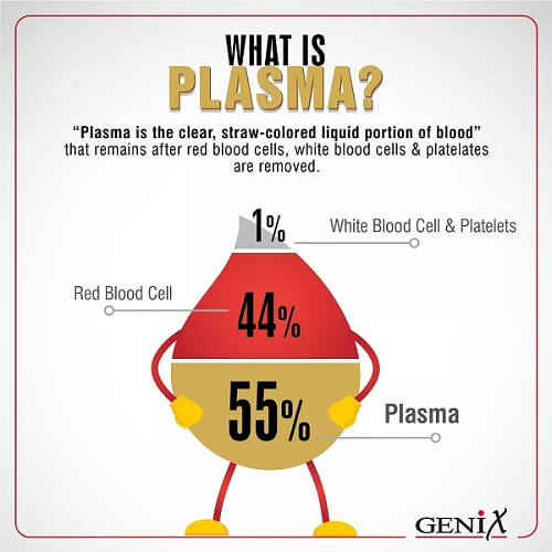What is Plasma infographic by Genix